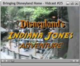 Bringing Disneyland Home Vidcast #25